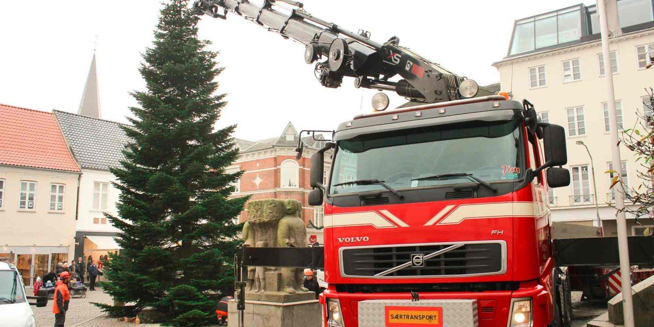 Juletræ på Rådhustorvet i Vejle hejses på plads